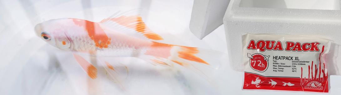 Kleintiere wie Fische, Insekten, Kriechtiere